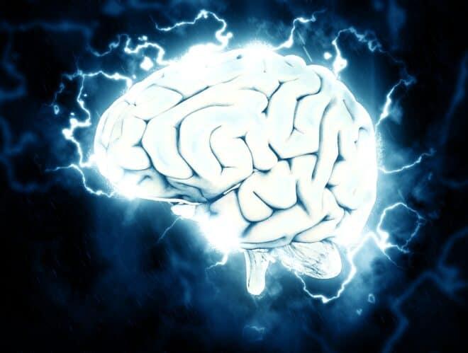 Photo d'illustration. Le cerveau humain.
